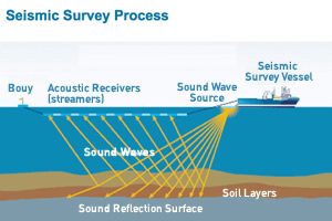 300x200_seismic_survey_process