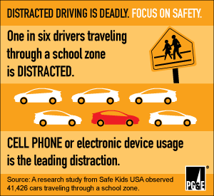 infographic: Distracted Driving