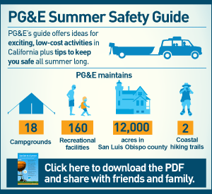 infographic: PG&E Summer Safety Guide